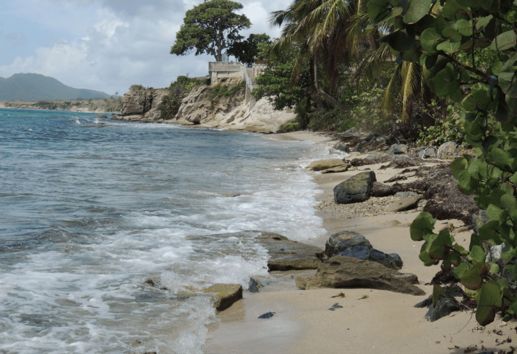 Seriously some of the best beaches in Vieques!