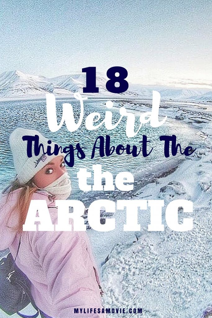 18 Weird things about the arctic mylifesamovie.com