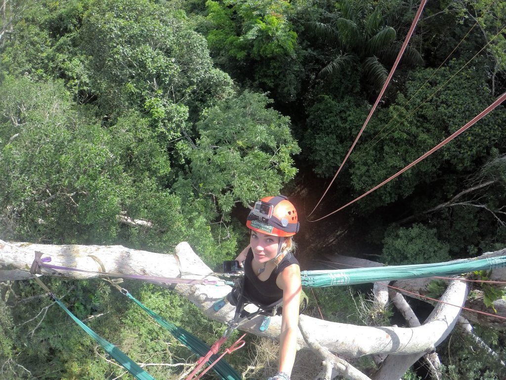 Treetop climbing amazon rainforest mylifesamovie.com