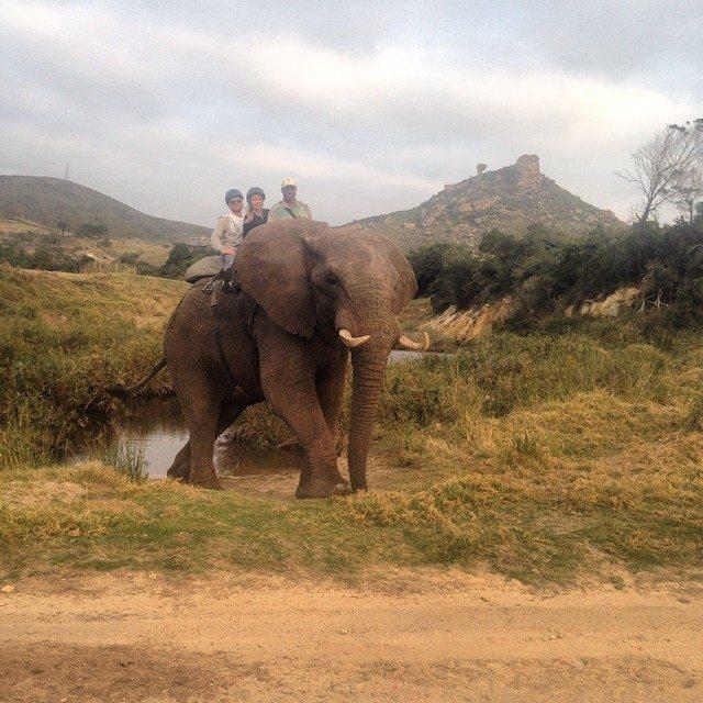 My Glampacking Safari in South Africa
