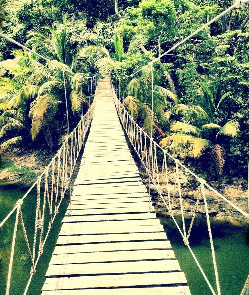 Hello, Honduras! 10 Things to do in the Jungle