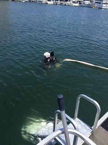 Swim test: Check