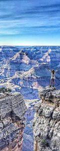 grand canyon mylifesamovie.com (1)