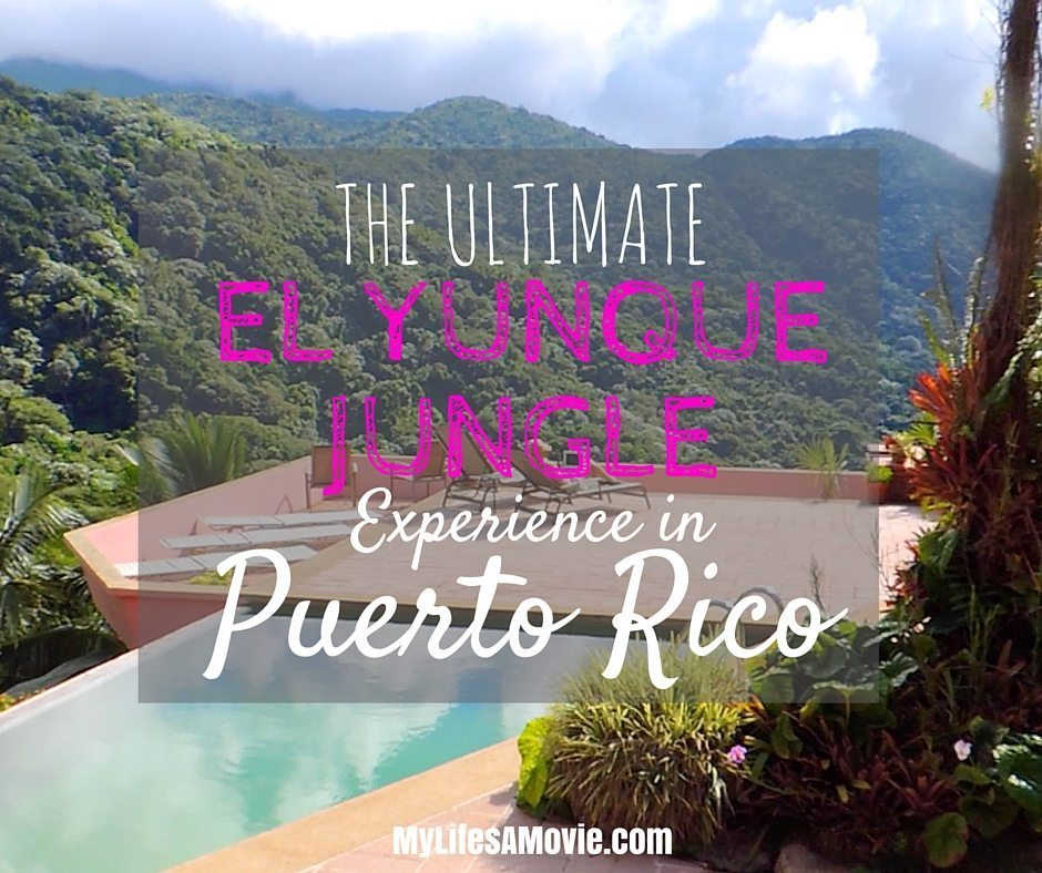 The Ultimate El Yunque Jungle Experience in Puerto Rico
