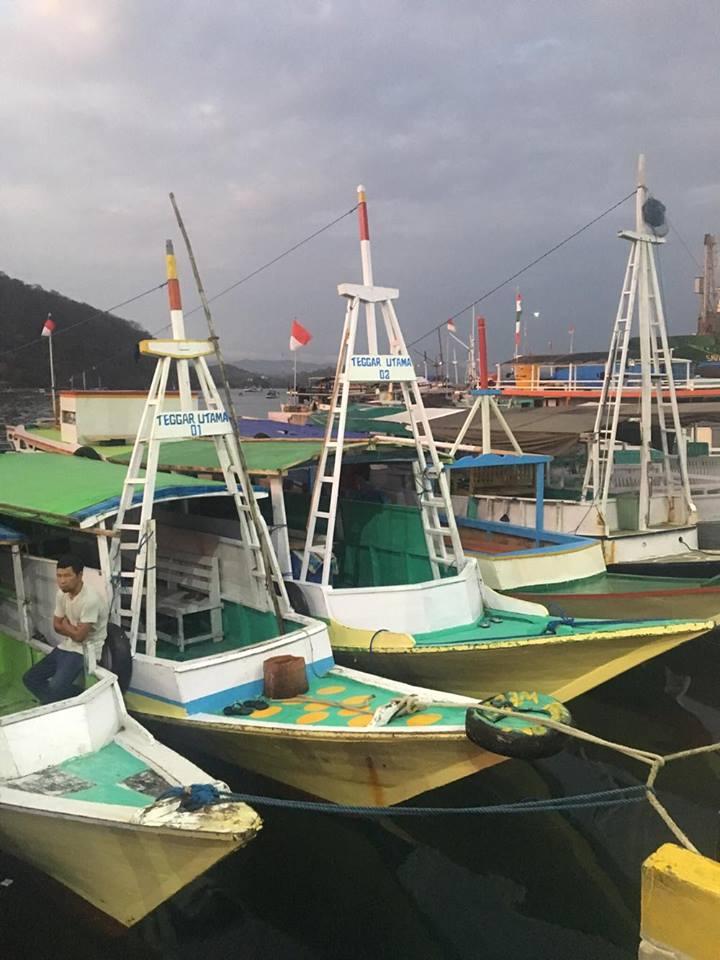 labuan-bajo-boats-to-komodo-island-mylifesamovie-com