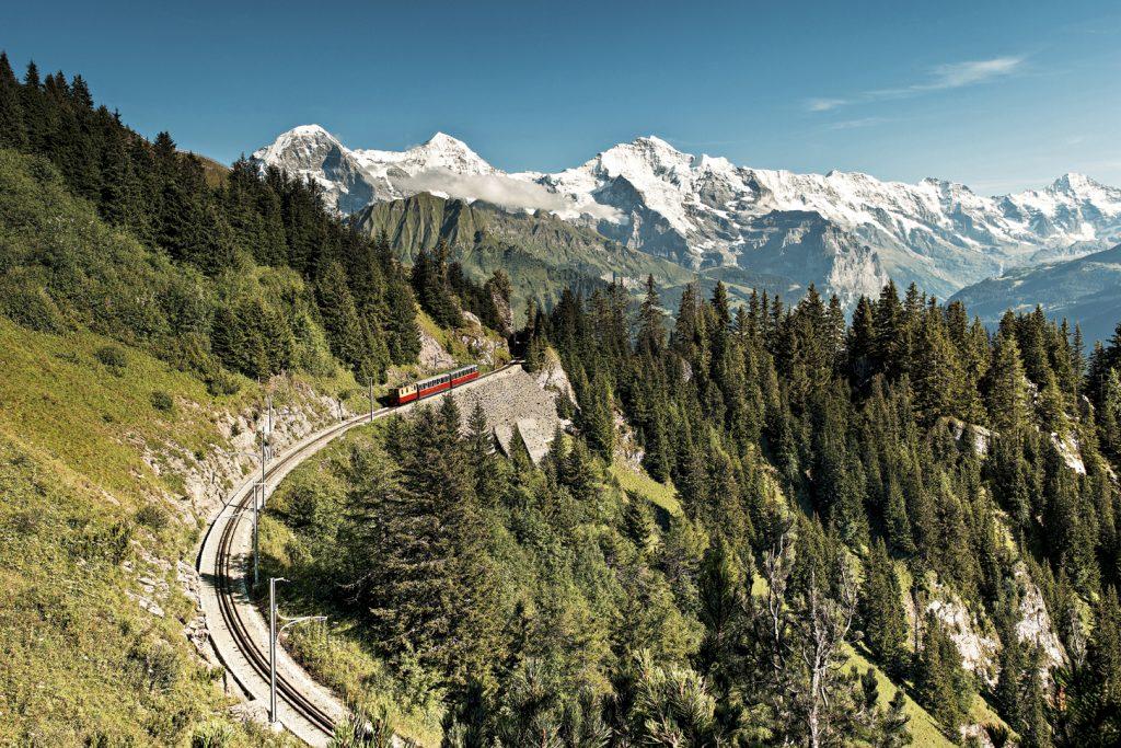 Schynige Platte, Jungfraubahn