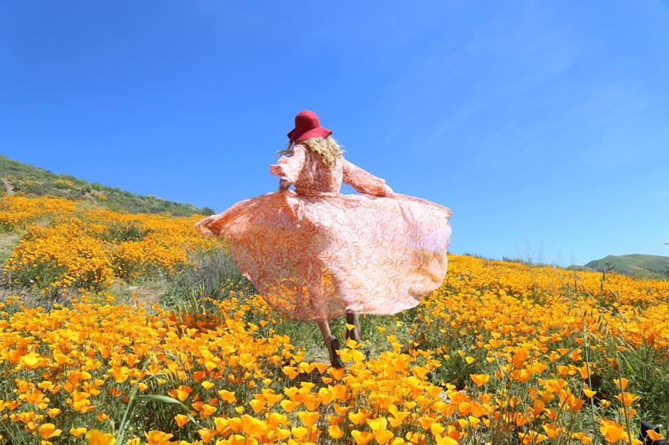 California Super Bloom mylifesamovie.com