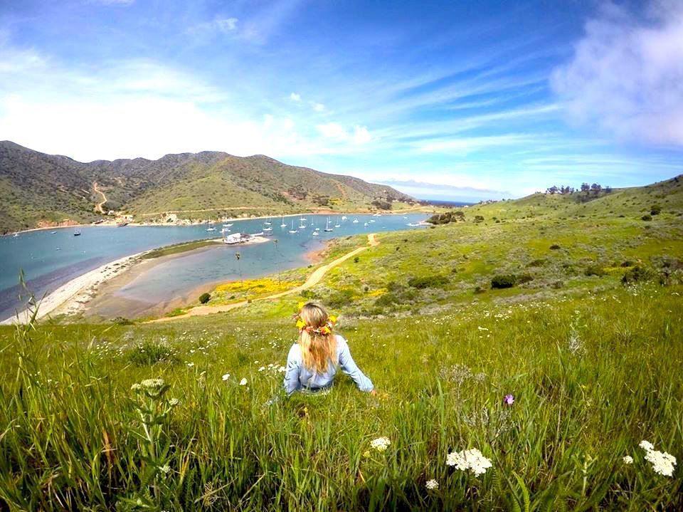 Catalina Island mylifesamovie