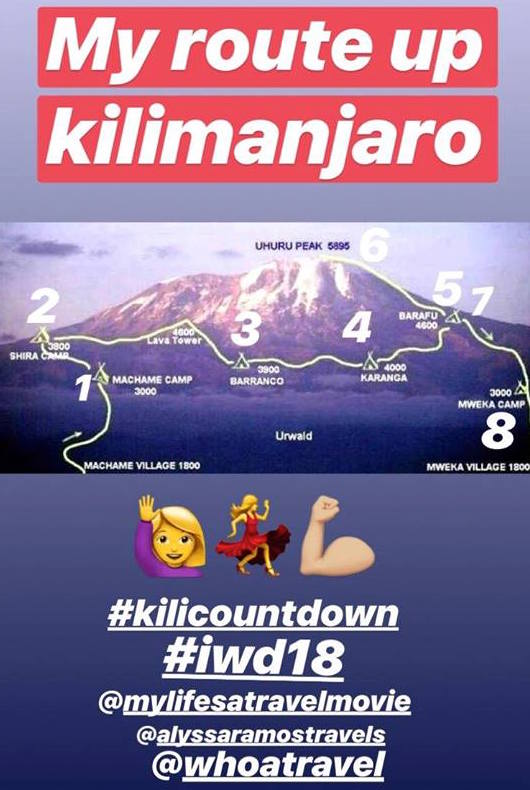 kilimanjaro questions mylifesamovie.com