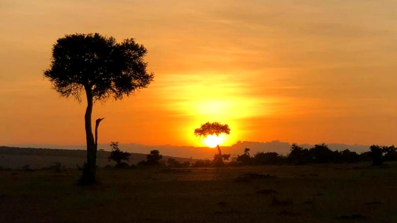 Easy Essential Kenya Travel Information