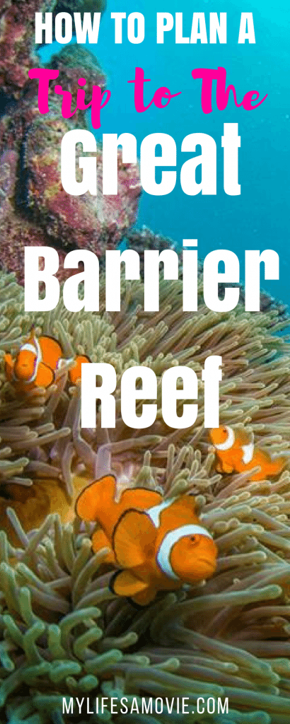 How to Plan a Trip to The Great Barrier Reef - My Life's a Movie