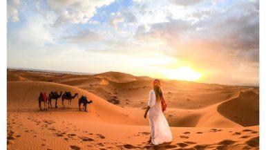 Sahara Desert Morocco sunset camels